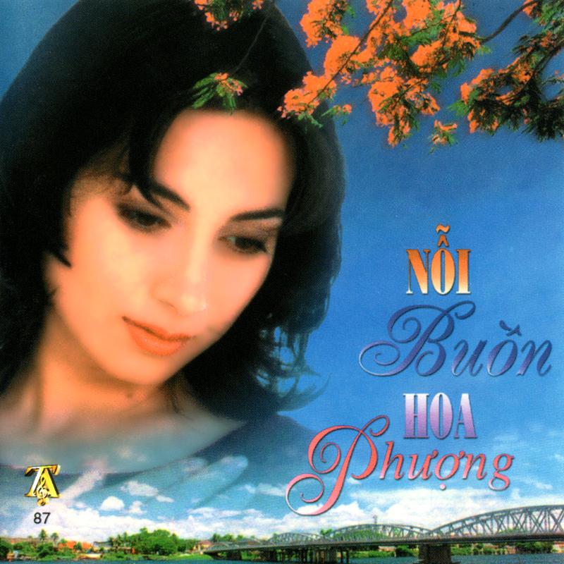 CD Nỗi buồn hoa phượng